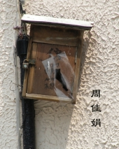 taggedImages_shanghai_04_08