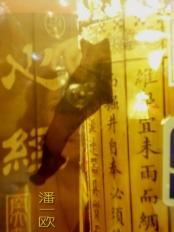 taggedImages_shanghai_09_04